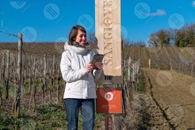 umbria vigneto vino campi colline ragazza donna strumento cielo cielo sereno tecnologia innovazione