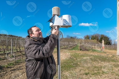 umbria vineyard wine fields hills man worker tools technology innovation sky clear sky