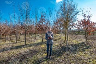 umbria vigneto vino campi colline ragazza donna strumento alberi tecnologia innovazione cielo sereno