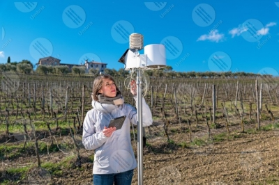 umbria vineyard wine fields hills girl woman tools technology innovation sky clear sky