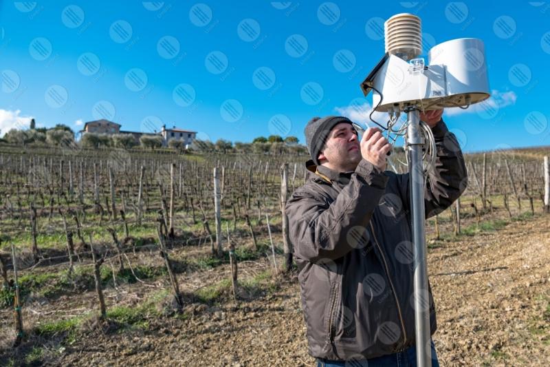 vigneto vino campi colline uomo lavoratore strumenti tecnologia innovazione cielo cielo sereno  Umbria