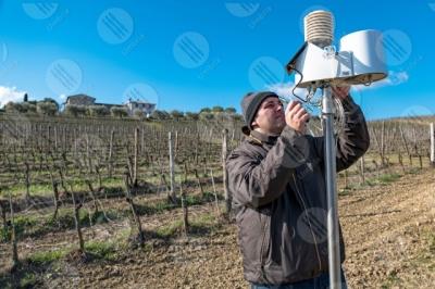 umbria vigneto vino campi colline uomo lavoratore strumenti tecnologia innovazione cielo cielo sereno