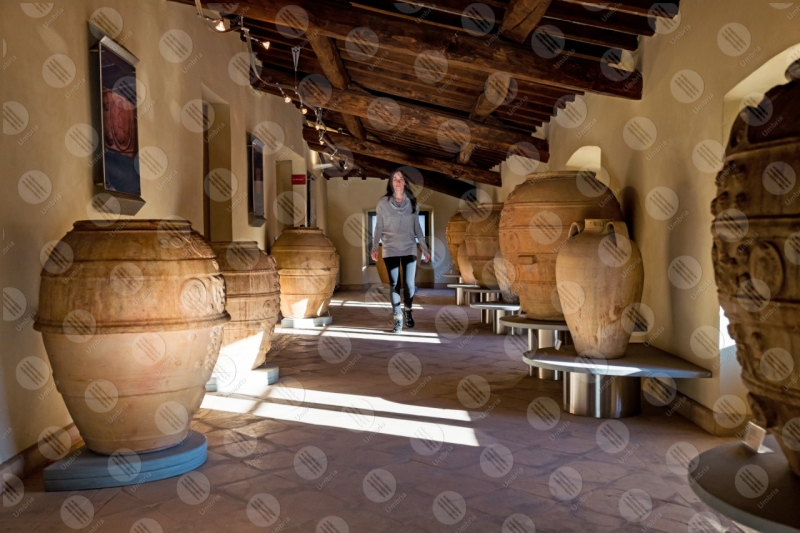 Dynamic Museum of Brick and Terracotta terracotta pottery vessels jars woman girl  Marsciano