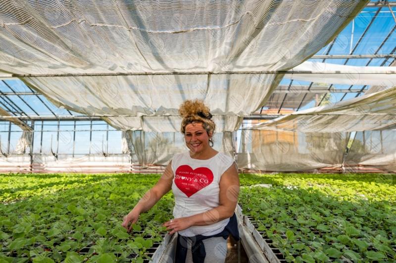 agricoltura coltivazione serra piantine lavoro lavoratrice ragazza  Umbria