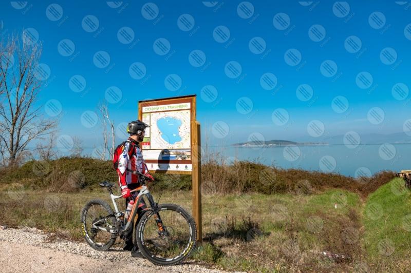 Lago Trasimeno bici ciclista Isola Polvese sentiero pista ciclabile acqua cielo cielo sereno panorama vista paesaggio uomo  Trasimeno