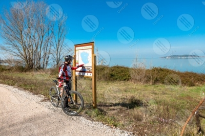 trasimeno Trasimeno Lake bike bicycle cyclist Polvese Island pathway bicycle path water sky clear sky panorama view landscape man